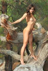 http://img109.imagevenue.com/loc581/th_884855789_MetArt_PRESENTING_ATENA_ATENA_A_by_ALAN_ANAR_medium_0121_123_581lo.jpg